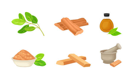 Sandalwood Timber and Wood Material with Fragrant Powder in Bowl Vector Set