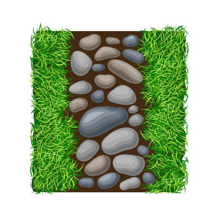 Walkway of Smooth Cobblestones Rested on Green Lawn Grass as Landscape Design Vector Illustration Vector Illustratie