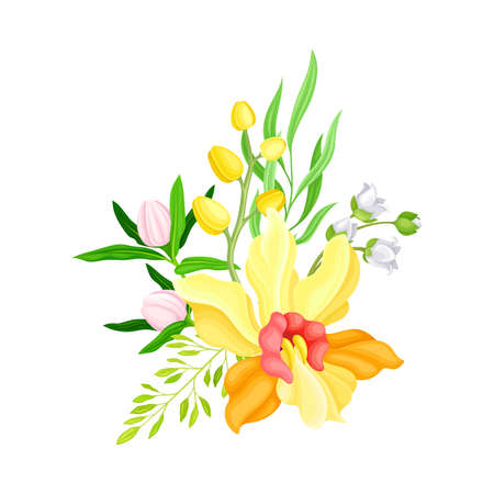 Yellow Orchid Bloom with Labellum and Floral Branches Vector Illustration Vetores
