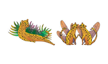 Spotted Leopard with Yellowish Skin and Long Body Lying in Tropical Leaves Vector Set