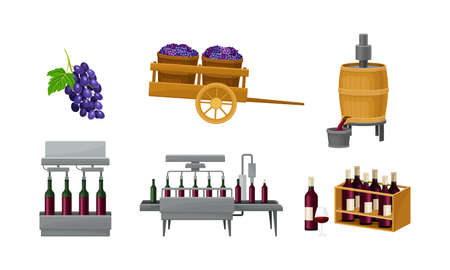 Grape Wine Production with Alcoholic Fermentation and Pouring in Bottles Process Vector Set