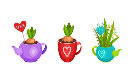 Garden Flowers in Different Containers and Fancy Pots Vector Set Vetores