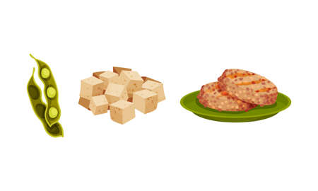 Patty Cake of Soy Meat and Cubes of Tofu Cheese Vector Set Vector Illustration
