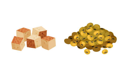 Pile of Raw Soy Beans and Tofu Cheese Vector Set