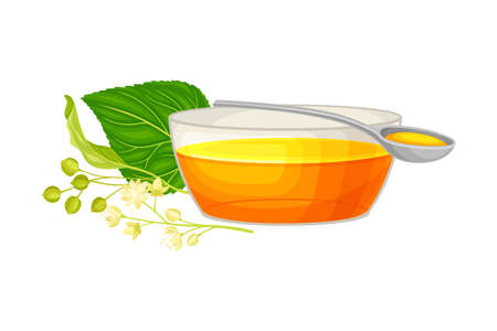 Linden Flower Clusters with Monofloral Honey Poured in Bowl Vector Illustration