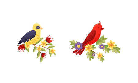 Perching Bird Sitting on Floral Twig or Branch with Blossoming Flowers Vector Set
