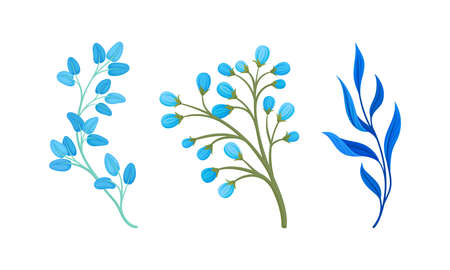 Blue Floral Twigs with Leaf and Floret on Stem Vector Set