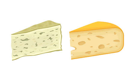 Different Cheese as Dairy Product Made from Milk Vector Set