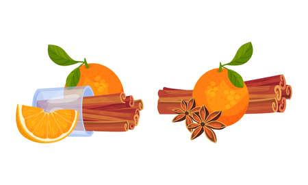 Dried Cinnamon Bark Strips or Sticks with Orange Fruit Vector Set