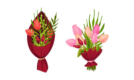 Tulip Flowers Wrapped in Gift Paper and Tied with Ribbon Vector Set