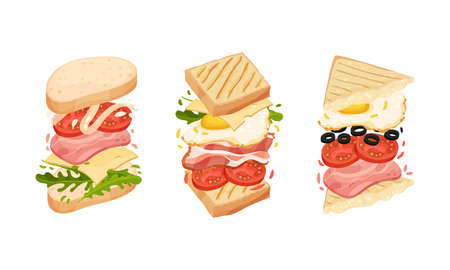 Sandwich with Ingredient Layers Between Bread Slices Vector Set Vecteurs