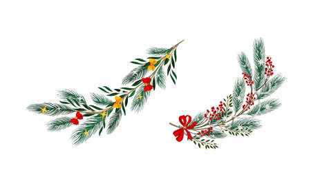 Set of decorated Christmas tree branches vector illustration