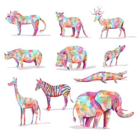 gato caricatura: Conjunto de animales salvajes vector safari en forma de diamante colorido