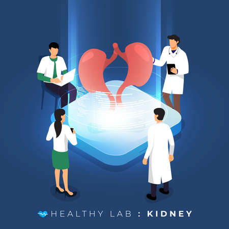 Isometric concept design lab via doctor analysis medical healthy about kidney. teamwork education of science. Vector illustrate.