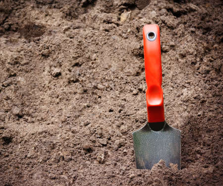 shovel in dirt: Garden shovel  in the dirt. Selective focus on shovel Stock Photo