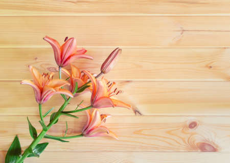 Orange lily flower on wooden background. Selective focus. Top view, copy space.