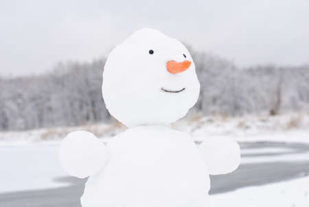 happy winter christmas snowman with carrot and eyes photo