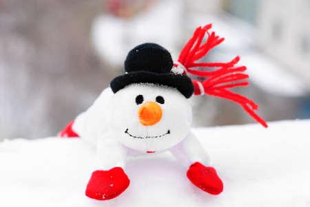 행복 한 겨울 눈사람 당근와 눈