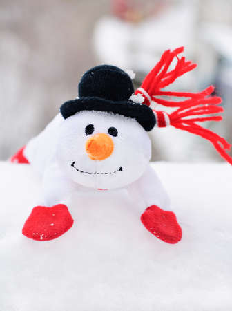 happy winter christmas snowman with carrot and eyes Stock Photo - 18259635
