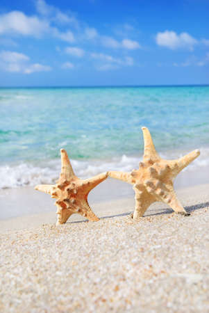holiday concept - two sea-stars walking on sand beach against waves background photo