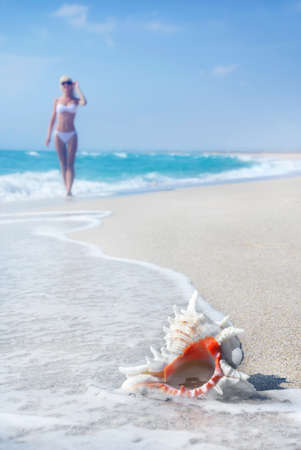 svelte: Svelte blond girl in white bikini on the sea sandy beach with big shell Stock Photo
