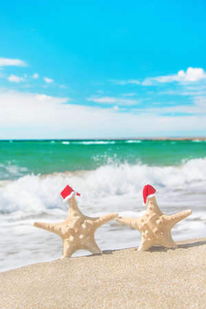 Sea-stars couple in red santa hats walking at sea beach. New Years day and Christmas vacation concept. photo