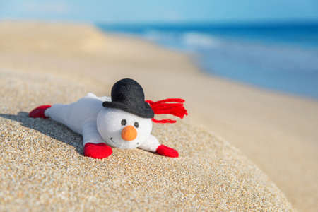 smiley toy snowman at sea beach holiday concept for new years and christmas cards - Beach Christmas Cards