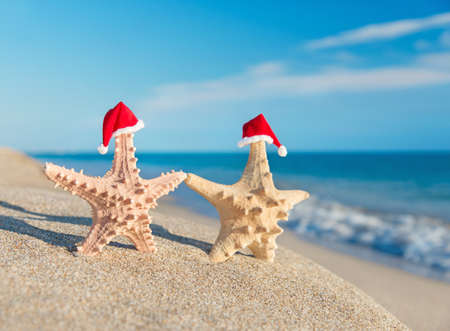 tropical christmas: Sea-stars couple in santa hats walking at sea sandy beach. Holiday concept for New Years and Christmas Cards.