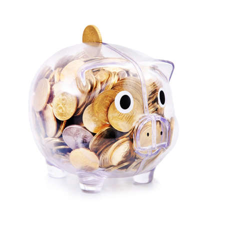 Savings in piggy bank isolated on the white background photo