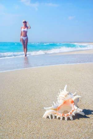 Svelte blond girl in white bikini on the sea sandy beach with big shell photo