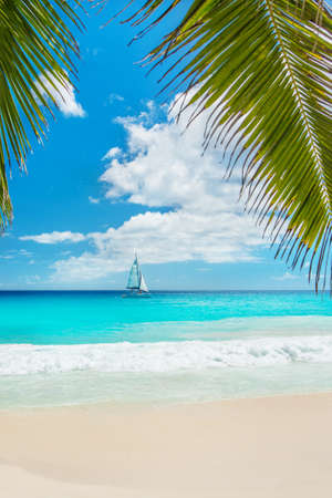Tropical ocean beach with yacht and palm leaves. Anse Georgette, Praslin island, Seychelles - vacation background