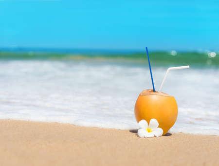 바다 열대 모래 해변에서 파도에 코코넛 스톡 콘텐츠