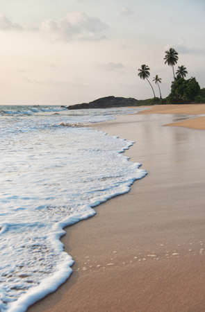 tropical ocean beach waves against rock and palms at sunset time