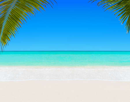 Tropical white sandy palm beach and turquoise clear ocean water - summer vacation background with blue sunny sky Stock Photo