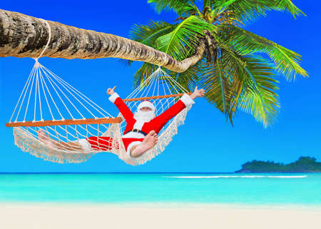 tropical tree: Santa Claus relax at sun in white cozy mesh hammock thumbs up positive gesturing under coconut palm tree shadow at tropical paradise sandy ocean beach - New Year and Christmas travel holidays concept Stock Photo