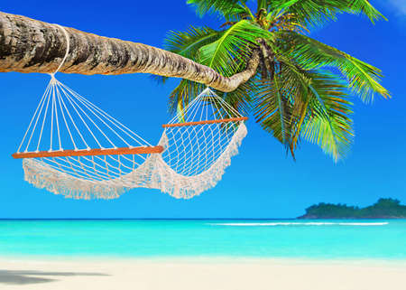 Wooden mesh hammock on perfect tropical white sandy coconut palm beach Baie Lazare, Mahe island, Seychelles, Indian Ocean Stock Photo