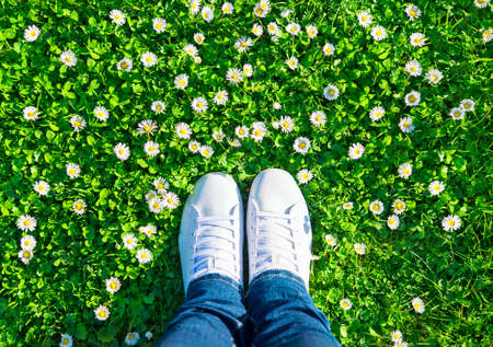 Legs in jeans and white sports lace up sneakers shoes on green meadow with grass and camomiles (daisies). Spring season wellness and clean planet ecology concept.