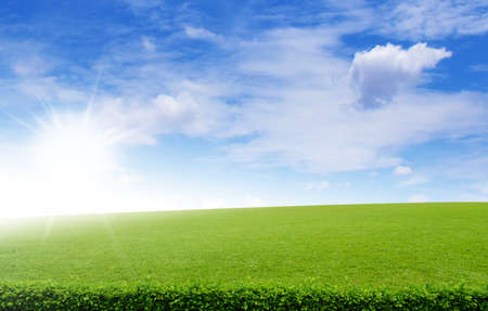nice weather: Green field under blue clouds sky, Beauty  Stock Photo