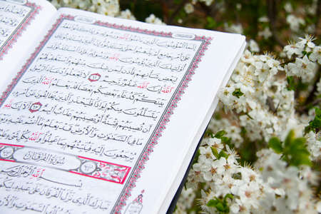 Holy book of Muslims around the world. An open page of Quran Reklamní fotografie