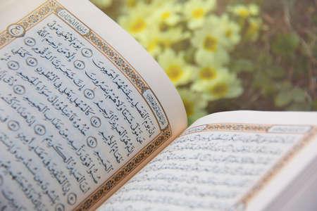 Libro sagrado de los musulmanes del mundo. Una página abierta del Corán Foto de archivo