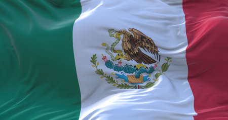 Mexico flag. Realistic flag of Mexico on the wavy surface of fabric. 3D Rendering Zdjęcie Seryjne