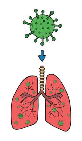 Hand drawn vector illustration of corona virus, covid-19. The entry of the virus into the lungs through breathing.