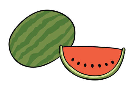 Cartoon vector illustration of whole watermelon and watermelon slice. Colored and black outlines.