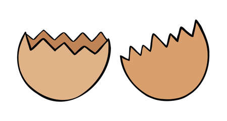 Cartoon vector illustration of broken eggshell. Colored and black outlines. 矢量图像