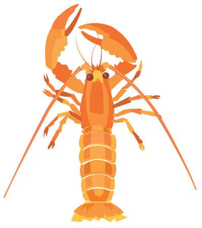 crabby: Illustration of a lobster.