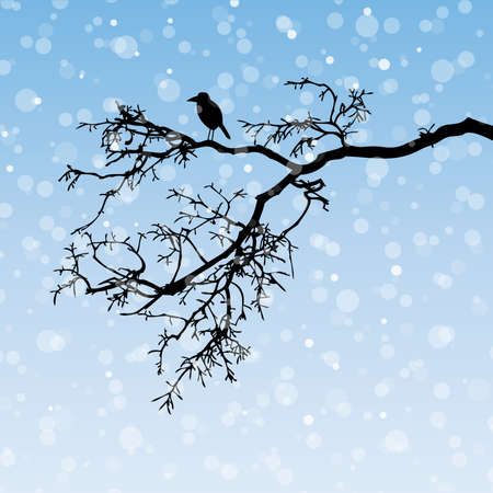 Raven on a branch, winter illustration, silhouette Vector