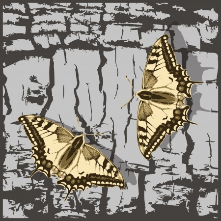 Flying butterfly over grunge wall. Vector Illustration. Stock Vector - 16219281