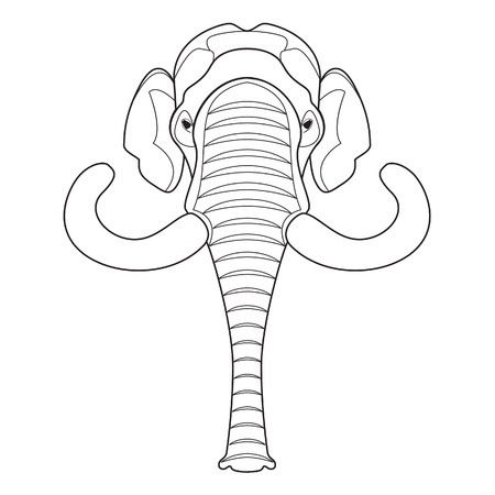 elephant nose: Mammoth head Illustration  Illustration