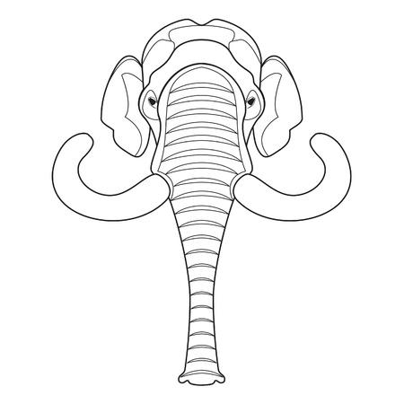 tusks: Mammoth head Illustration  Illustration