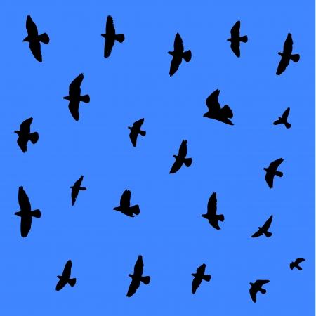 Flying birds seamleas background  Illustration  Vector